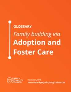 Glossary: Family Building Via Adoption And Foster Care