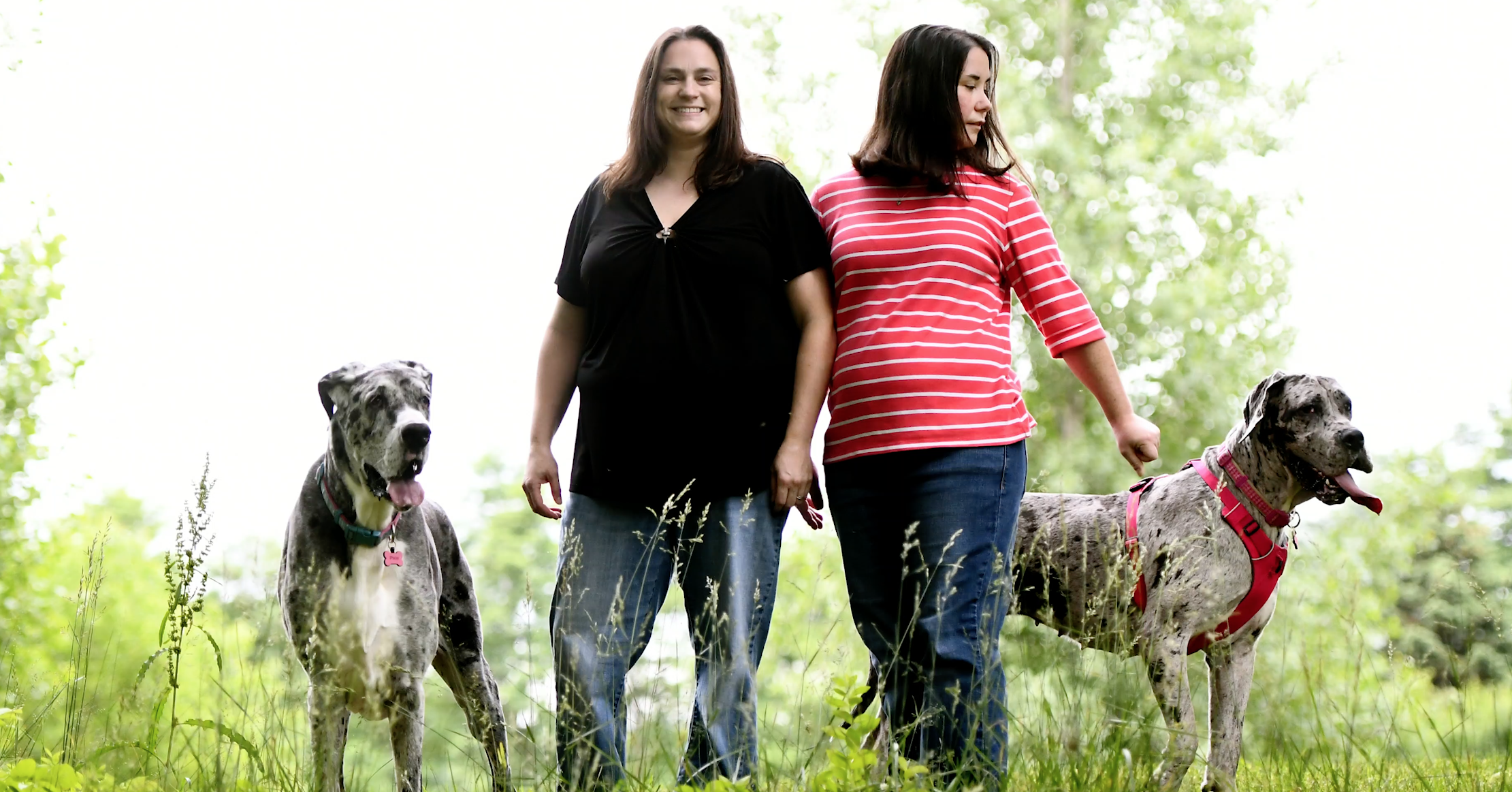 Dana and Kristy in Field with Great Danes