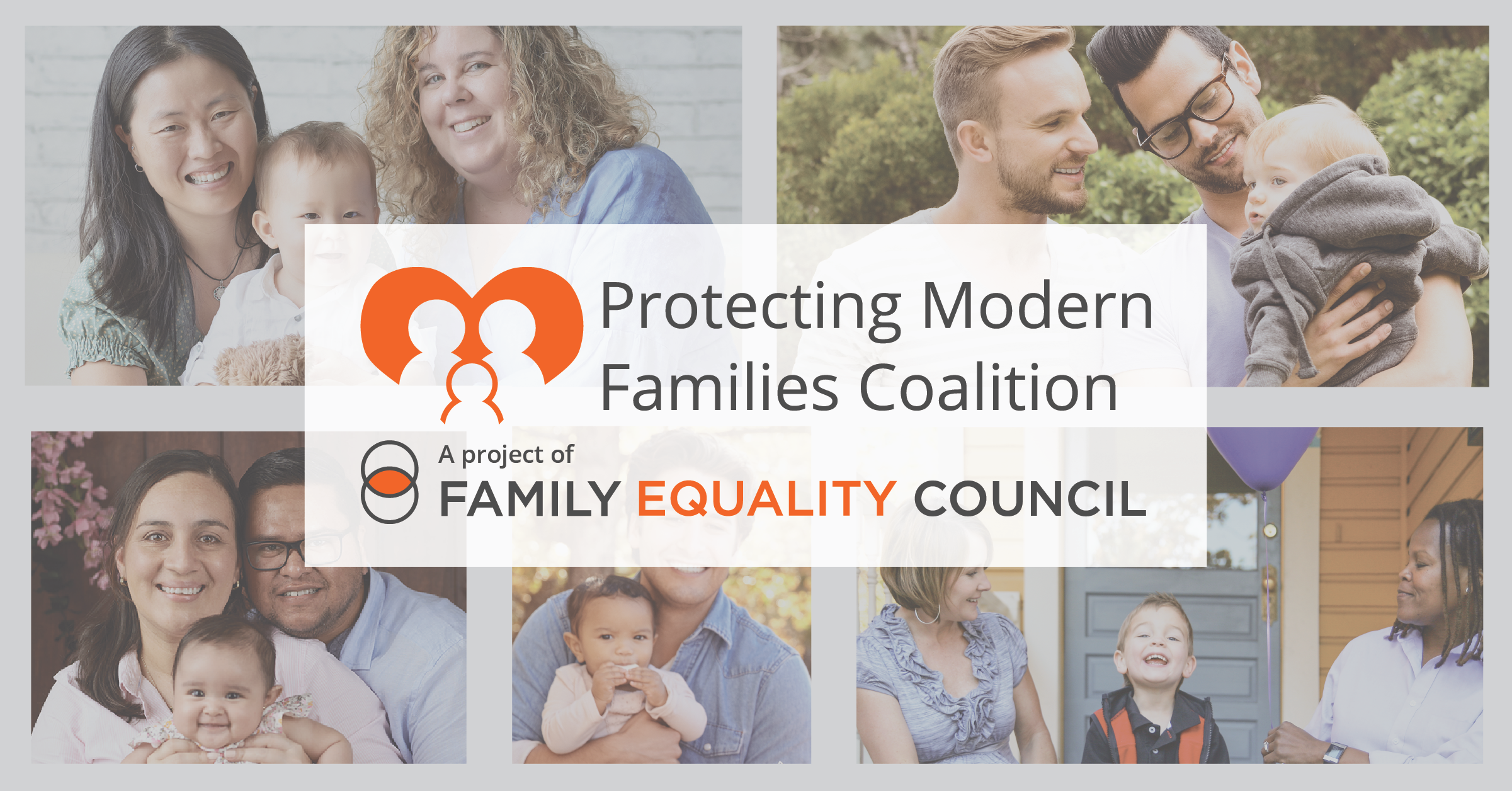 Protecting Modern Families Coalition A Project of Family Equality Council