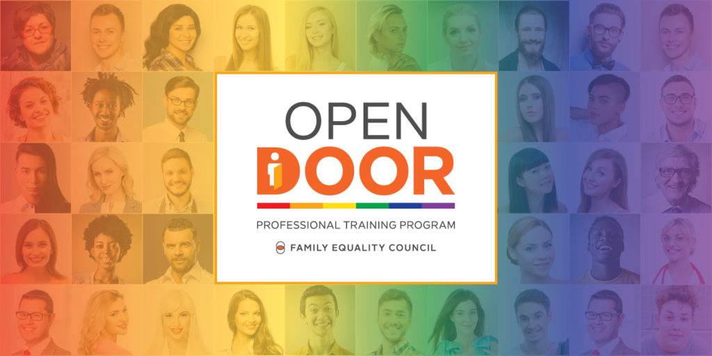 Open Door Professional Training Program