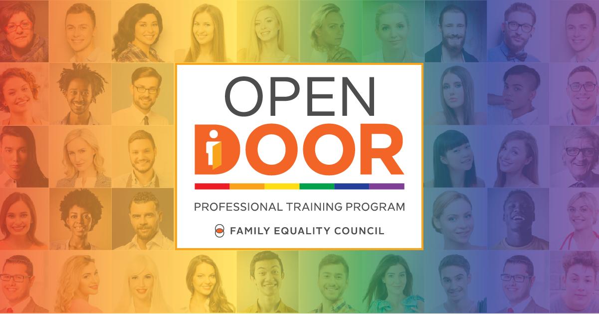 Open Door Professional Training Program