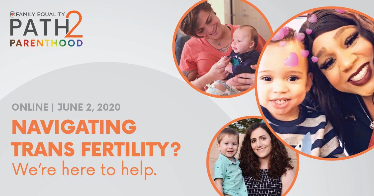 Trans Fertility